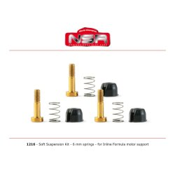 Suspension Kit for motor mount  NSR128X Formula  MEDIUM...